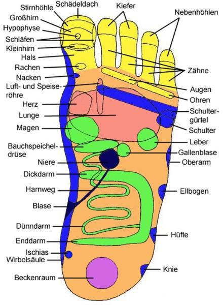 body and brain balance Mitzscher & Mitzscher GbR - Sport, Ernährung ...